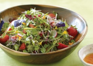 microgreens_with_strawberry-lime_vinaigrette-458x326