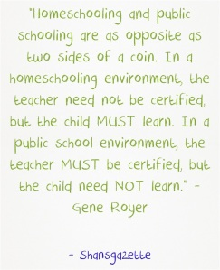 Homeschooling-and-public